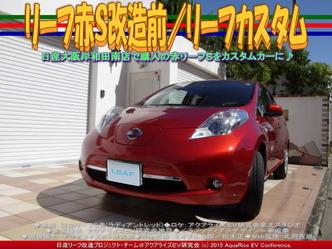 リーフ赤S改造前(2)/リーフカスタム01