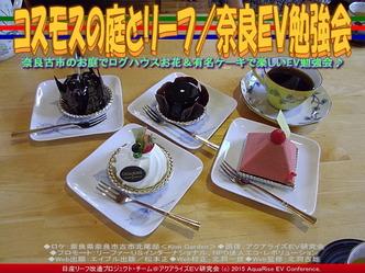 コスモスの庭とリーフ(3)/奈良EV勉強会05