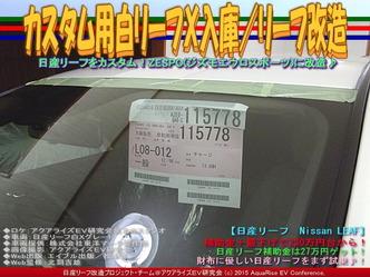 カスタム用白リーフX入庫/リーフ改造05