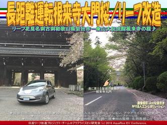 長距離運転根来寺大門桜/リーフ改造01