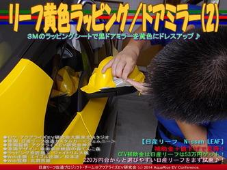 リーフ黄色ラッピング/ドアミラー(2)02