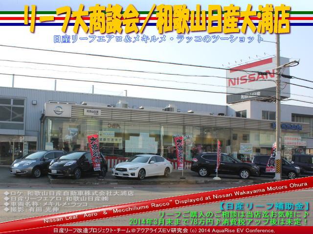 日産リーフ大商談会/和歌山日産大浦店@日産リーフ改造