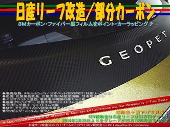 日産リーフ改造/部分カーボン@アクアライズEV研究会10