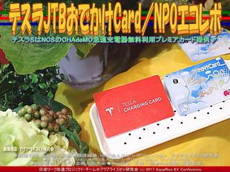 テスラJTBおでかけCard(8)/NPOエコレボ画像01