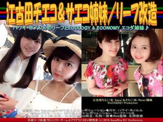 江古田チエコ&サエコ姉妹/リーフ改造02