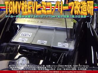 TGMY社EVヒミコ/リーフ改造研03