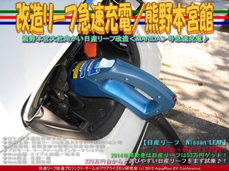 改造リーフ急速充電/熊野本宮館04