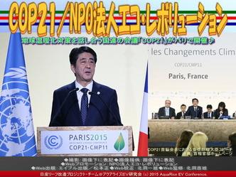 COP21(3)/NPO法人エコ・レボリューション01