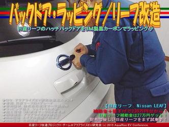 バックドア・ラッピング/リーフ改造01
