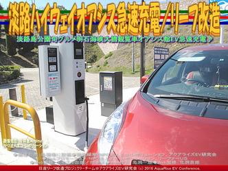 淡路ハイウェイオアシス急速充電/リーフ改造03