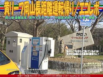 黄リーフ急速充電加西SA上り/エコレボ画像02