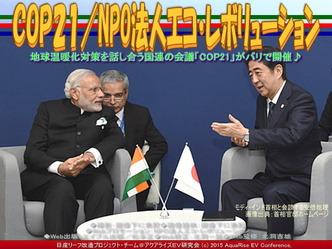 COP21(2)/NPO法人エコ・レボリューション03