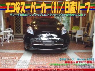 エコなスーパーカー(1)/日産リーフ05