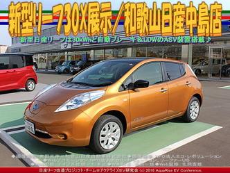 新型リーフ30X展示(4)/和歌山日産中島店01