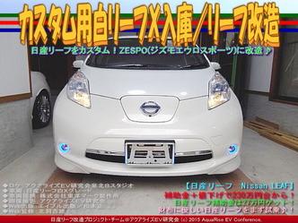カスタム用白リーフX入庫/リーフ改造02