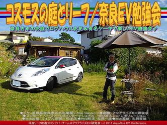 コスモスの庭とリーフ(3)/奈良EV勉強会01