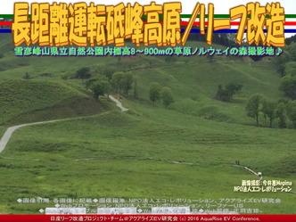 長距離運転砥峰高原/リーフ改造02