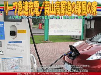リーフ急速充電/蒜山高原道の駅風の家03