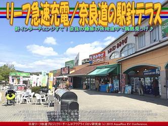 リーフ急速充電/奈良道の駅針テラス01