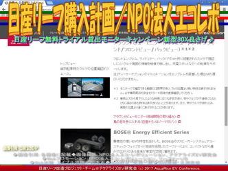 リーフ購入計画【8】オプション(2)/エコレボ画像02