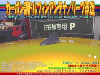カーボン調ドルフィンアンテナ/リーフ改造01