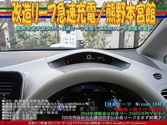 改造リーフ急速充電/熊野本宮館05