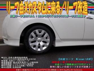 リーフ白Xカスタムに来る(5)/リーフ改造02