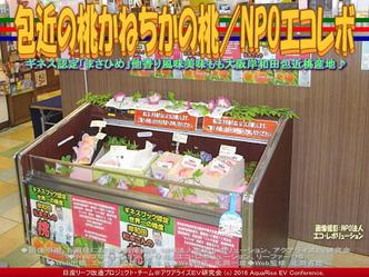 かねちかの桃/エコレボ産リーフ改造01