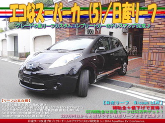 エコなスーパーカー(5)/日産リーフ01
