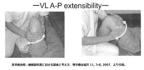 VL exensibility