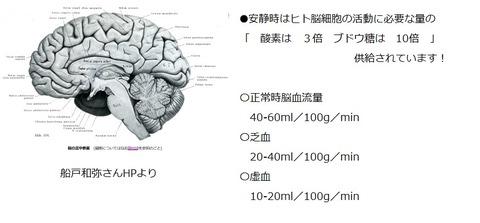 安静時脳血流量