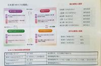 DSC_0252のコピー