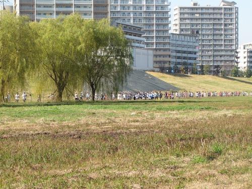 板橋区マラソン大会