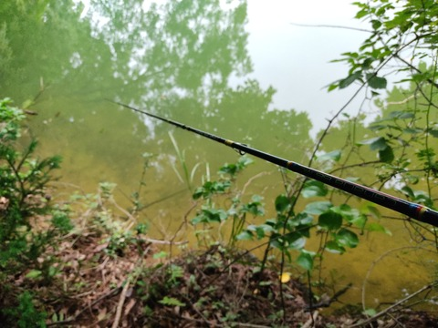 【淡水魚】下関市でバス釣りしてます。