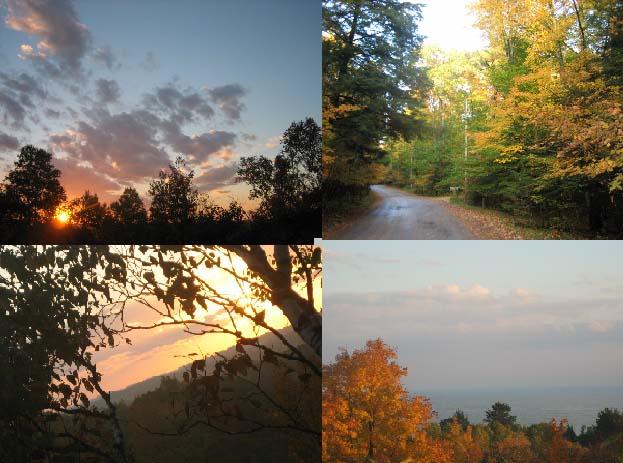 州立自然公園の紅葉