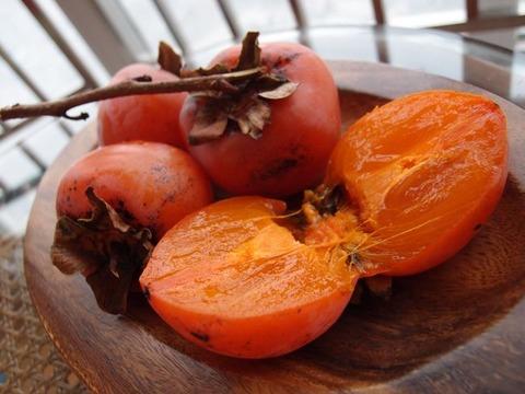 中国の柿 まなみヨガ西安