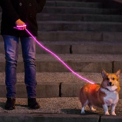 nitey-leash-light-up-dog-leash-pink_2048x