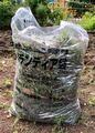 草取り跡の雑草袋