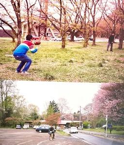 霞城公園桜2005・4邦衛さんキャッチボール・自転車