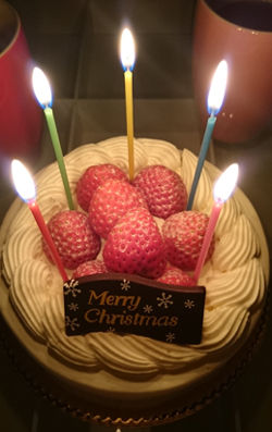 クリスマスケーキ_20141225