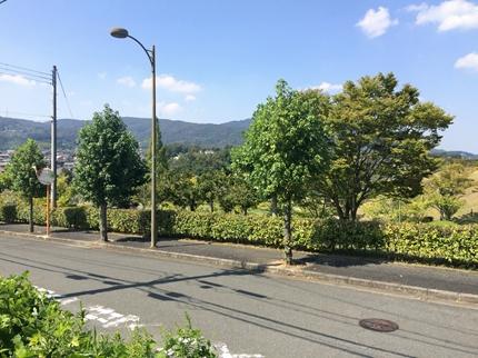 s-奈良の平群の検討 (2)