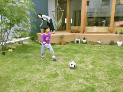 広島福山の芝