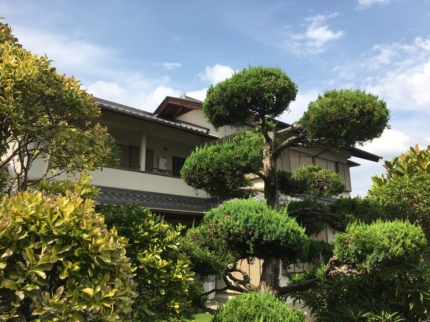 奈良で敷地見学