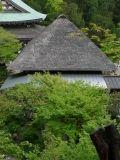 茅葺方形屋根