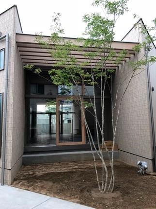 広島:福山の家3 植栽