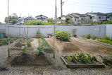 奈良:大和郡山の家 1年検査