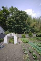三重県:名張の家 家の裏の畑