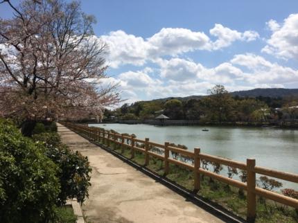 京都へ敷地見学