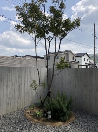 広島福山の庭2 (2)