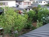 奈良県四条大路の家:植栽